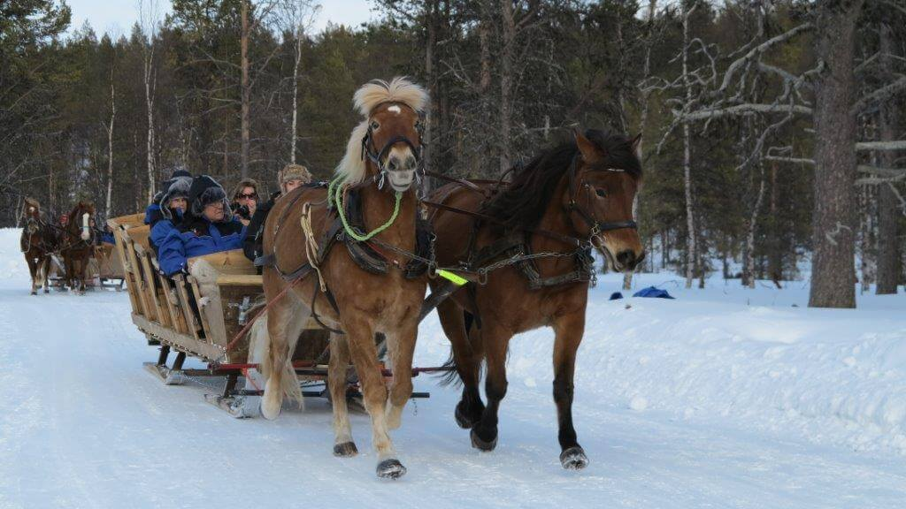 Grupos de Viagens Especiais Lapônia, Repúblicas Bálticas 2014