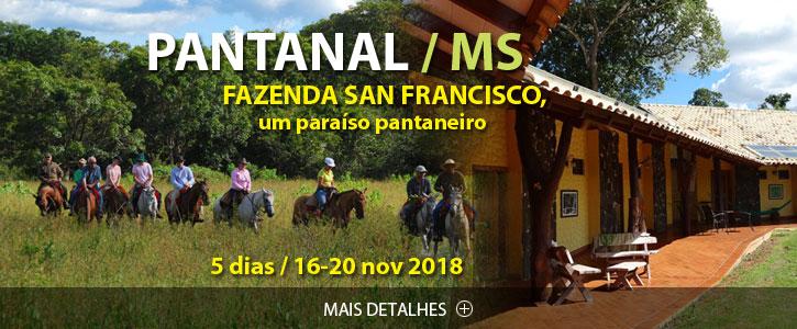 Pantanal Scan-Suisse Nov 18