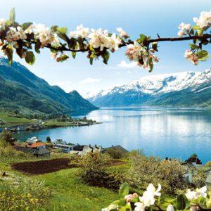 Capitais Nórdicas e Fjords dos Sonhos